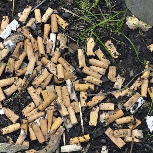 Solo in Italia, ogni giorno 165 milioni di cicche cancerogene disperse nell'ambiente