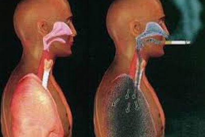 Il fumo resta la causa primaria del cancro